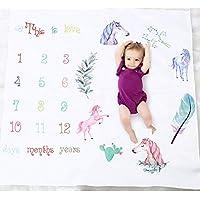 Baby Monthlyマイルストーン毛布、子供新生児幼児写真小道具撮影OenbopoバックドロップSwaddling Wrapベビーシャワーギフト写真背景に月の数値(Pony)