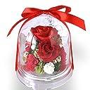 プリザーブドフラワー 花 ドーム 赤 バラ ギフト 誕生日 母の日 チャーム(レッド)