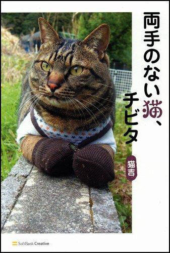両手のない猫、チビタの詳細を見る