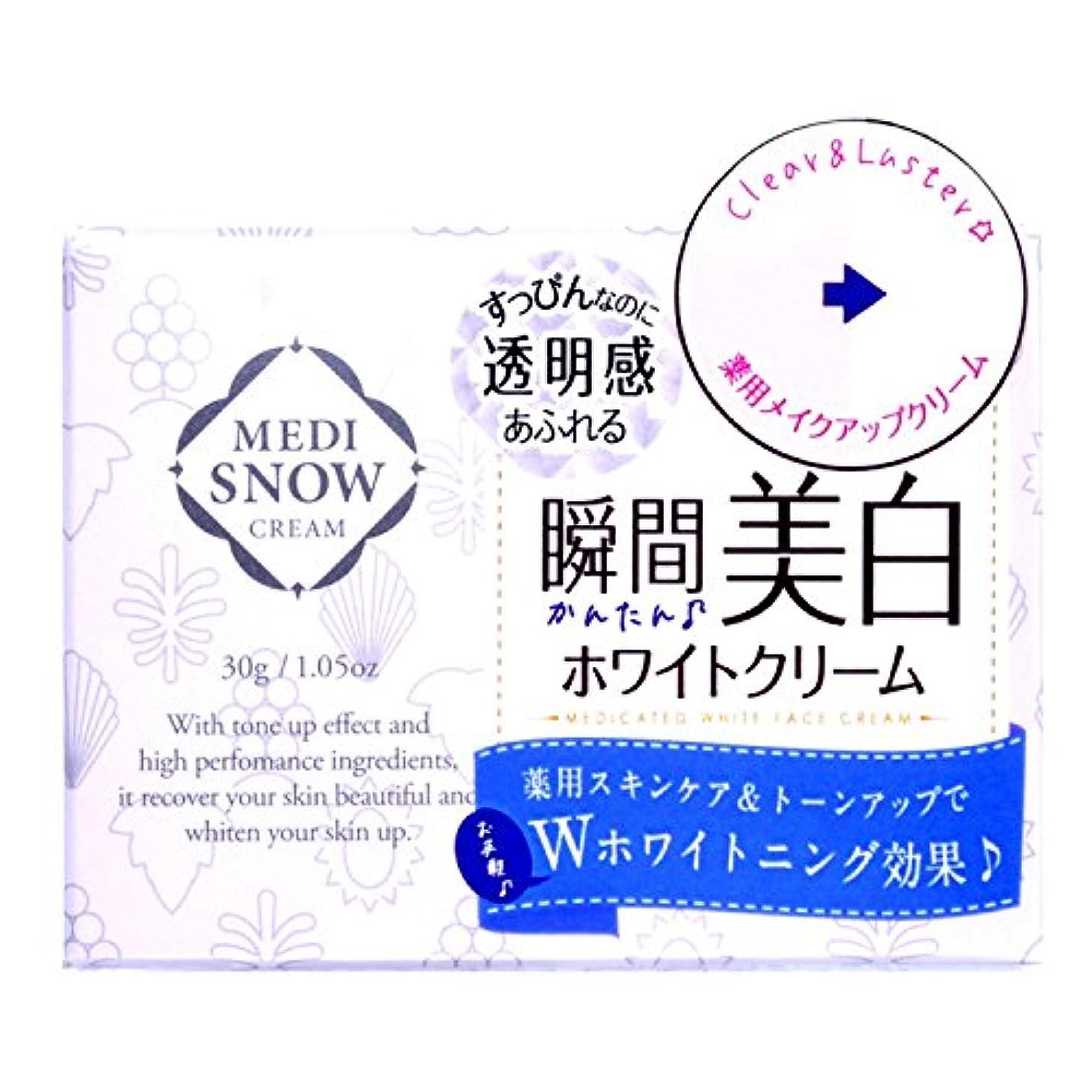 レベル慰めロードされたメディスノウ ホワイトフェイスクリーム 30g [医薬部外品]