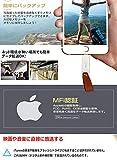Apple認証【MFI取得 iOS 13対応) 】iPhone USBメモリ 128gb フラッシュドライブ コネクタ搭載 外付 USB 3.0 容量不足解消 iPad Pro Air/mini iPhone X XS MAX iPod ios用などに対応 画像
