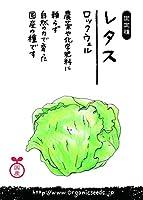 国産・自然農法(固定種)レタス ロックウェル