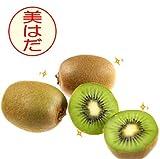 【キウイ フルーツ】大玉27玉前後(約3kg)