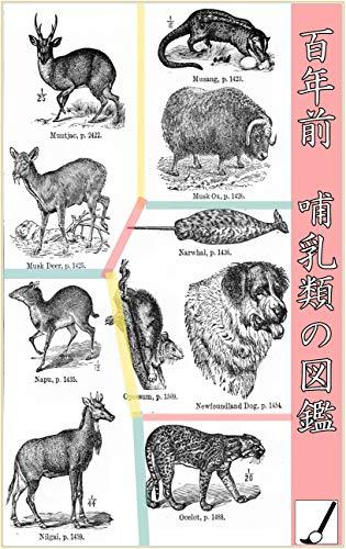 百年前哺乳類の図鑑