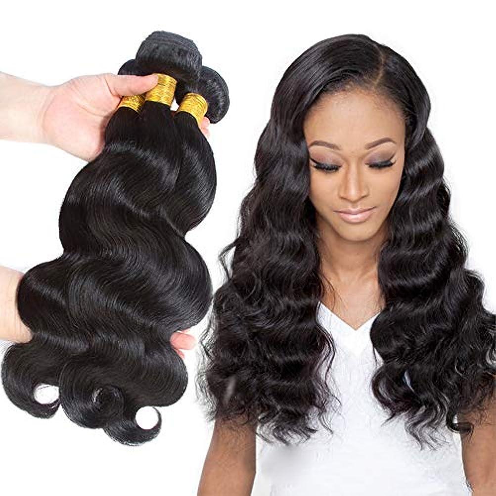 リスク交流する誰でもWASAIO 10インチ-26インチ)、ブラジルのボディウェーブの人間の毛髪の束スタイルの交換のための本能的な延長の付属品-色(100g / 1バンドル) (色 : 黒, サイズ : 10 inch)