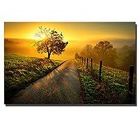 WZYDFH 居間のための防水キャンバスの大きいサイズの壁の芸術の写真の美しい日没の景色の絵画印刷物
