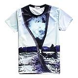 【 3D アートTシャツ 】 アート ファッション おもしろ ビックリ オシャレ メンズ レディース インナー Lサイズ 【 Aタイプ 】 SD-3DPA-A-L