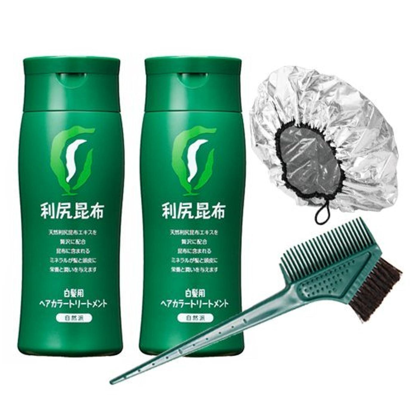 必須安定霜利尻ヘアカラートリートメント白髪染め 200g×2本(ブラック)&馬毛100%毛染めブラシ&専用キャップセット