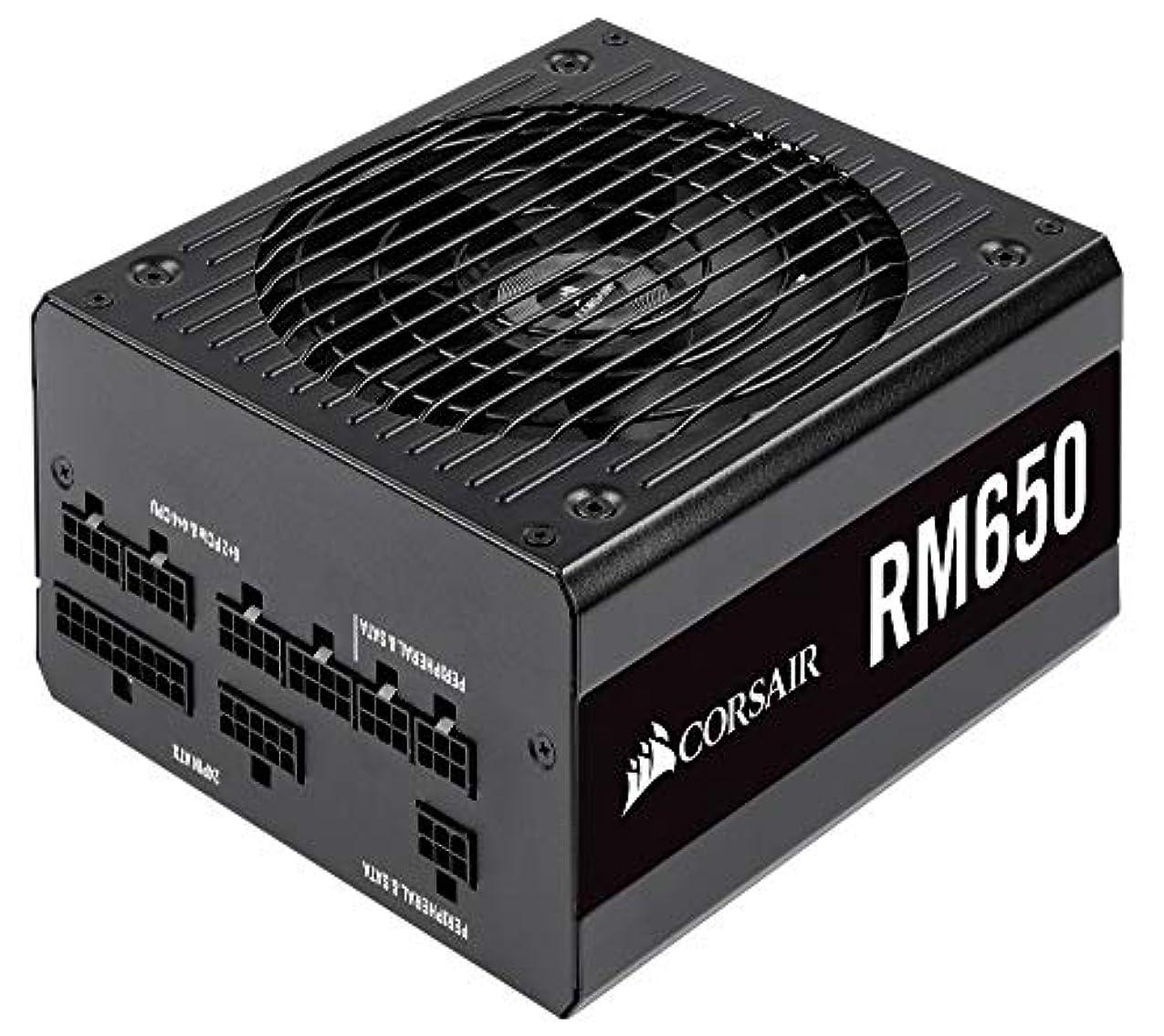 ヤング移民バーベキューCorsair RM650-2019- 650W PC電源ユニット 80PLUS GOLD PS861 CP-9020194-JP