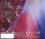 手遅れcaution(TYPE-B)(DVD付) 画像