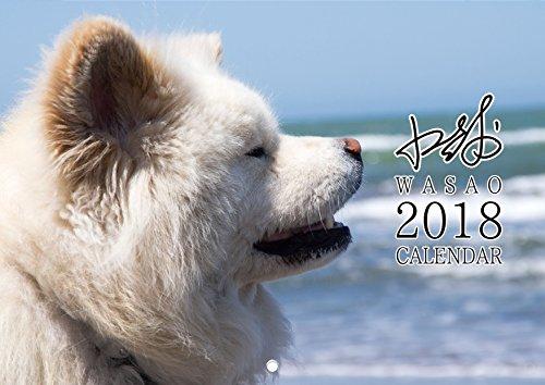 ぶさかわ 人気犬 わさお 2018 壁掛け カレンダー (使用時A3縦サイズ)