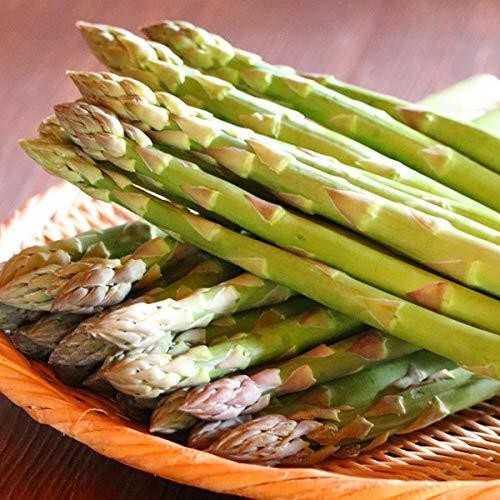 【生】で食べられる!北海道富良野産 ハウス栽培 グリーンアスパラガス Lサイズ以上!1kg