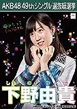 【下野由貴 HKT48 チームKⅣ】 AKB48 願いごとの持ち腐れ 劇場盤 特典 49thシングル 選抜総選挙 ポスター風 生写真