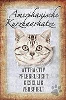ComCard募集:アメリカンショートヘアキティ猫 - 魅力的で、お手入れが簡単、ファンタスティックトーキング、遊び心のある猫メタルサイン