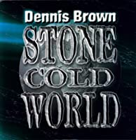 Stone Cold World [12 inch Analog]