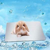WBinplSE 小動物冷却パッドハムスタークールプレートアイスベッドチラー熱放散、ウサギ、バニー、モルモット、ハムスター、チンチラ、その他のペットに適しています (L)