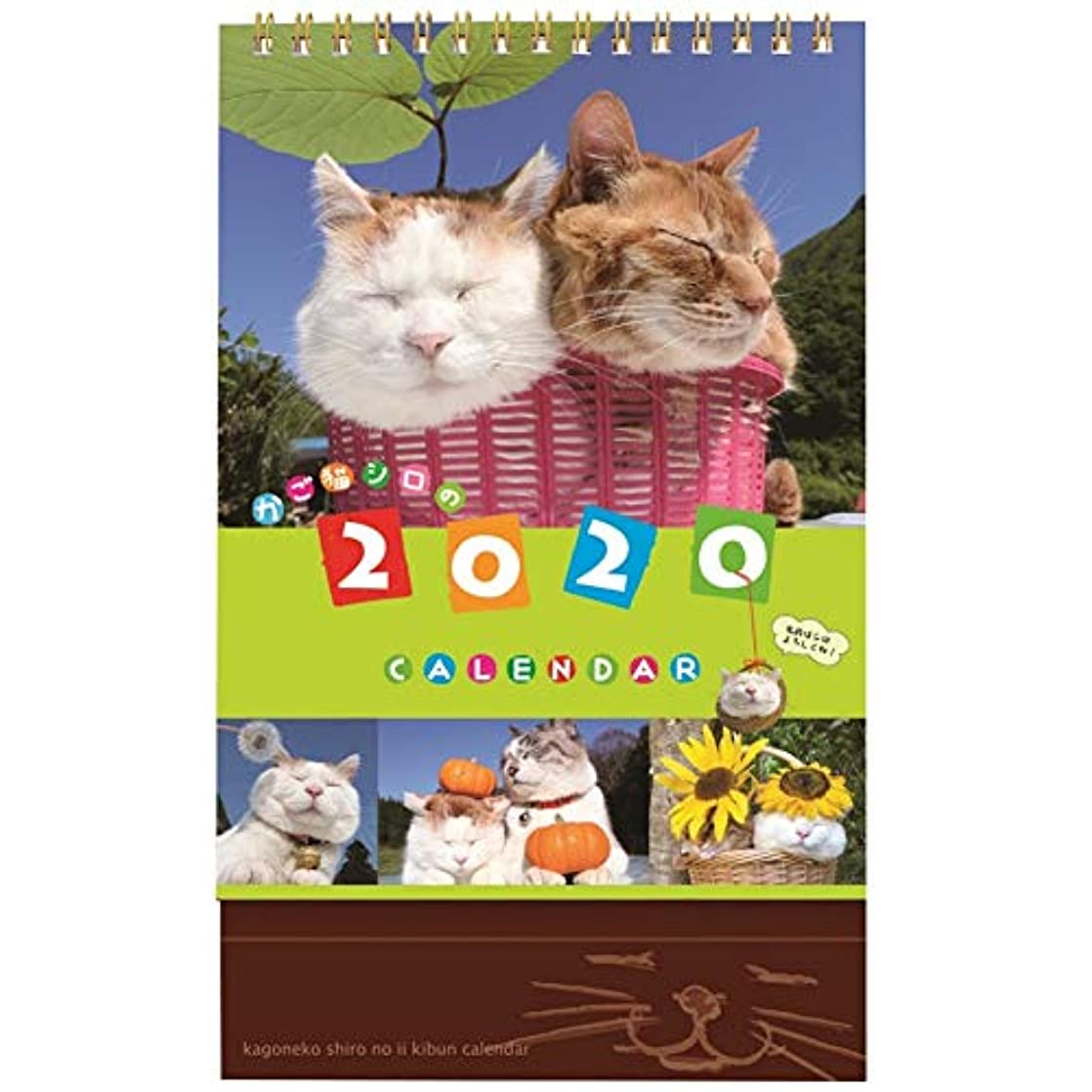 欲求不満多用途うめき声学研ステイフル 2020年 カレンダー 卓上 かご猫 M09083
