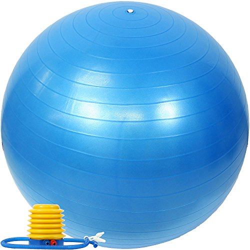 EGS(イージーエス) バランスボール アンチバースト仕様 ポンプ付き ブルー 65cm EG-3062
