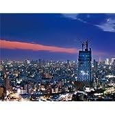 500ピース ジグソーパズル プチ2  東京スカイツリー(R) -夜景日和- スモールピース(16.5x21.5cm)