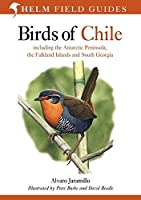 Birds of Chile: Including the Antartic Peninsular, the Falkland Islands and South Georgia (Helm Field Guides)