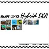 Hybrid SKA