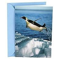 (Penguin) - Hallmark Shoebox Funny Congratulations Greeting Card (Penguin)