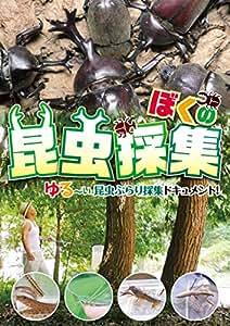 ぼくの昆虫採集 [DVD]