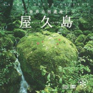 屋久島(DVD付)の詳細を見る