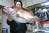 ニートの僕が7年間秘密にしていたショアから鯛ラバで真鯛を釣る方法 どんぞこニート