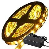 LEDテープライト LEDテープ 5m 100V (GT-SET5050WW-300P-IP44-6A)SMD 5050 60LEDS/M 天井照明 間接box LED (非防水タイプ5M+アダプター,電球色)