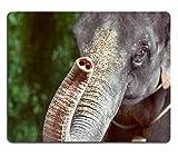 Natural Rubber Gamingマウスパッド美しい一日に象の表面に1つの象が映し出されます(マウスパッド/ゲーム用マウスパッド) Yanteng Yanteng181210-1-Q2-089