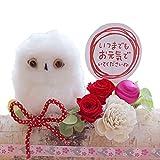 福来郎(レッド) プリザーブドフラワー 母の日 花 ギフト 誕生日 還暦祝い 送別 退職祝い ふくろう