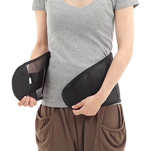 Health Wide 手軽につけられる東洋医学設計の腰サポーター 加圧式 女性 腰 サポーター 男女兼用 (L)