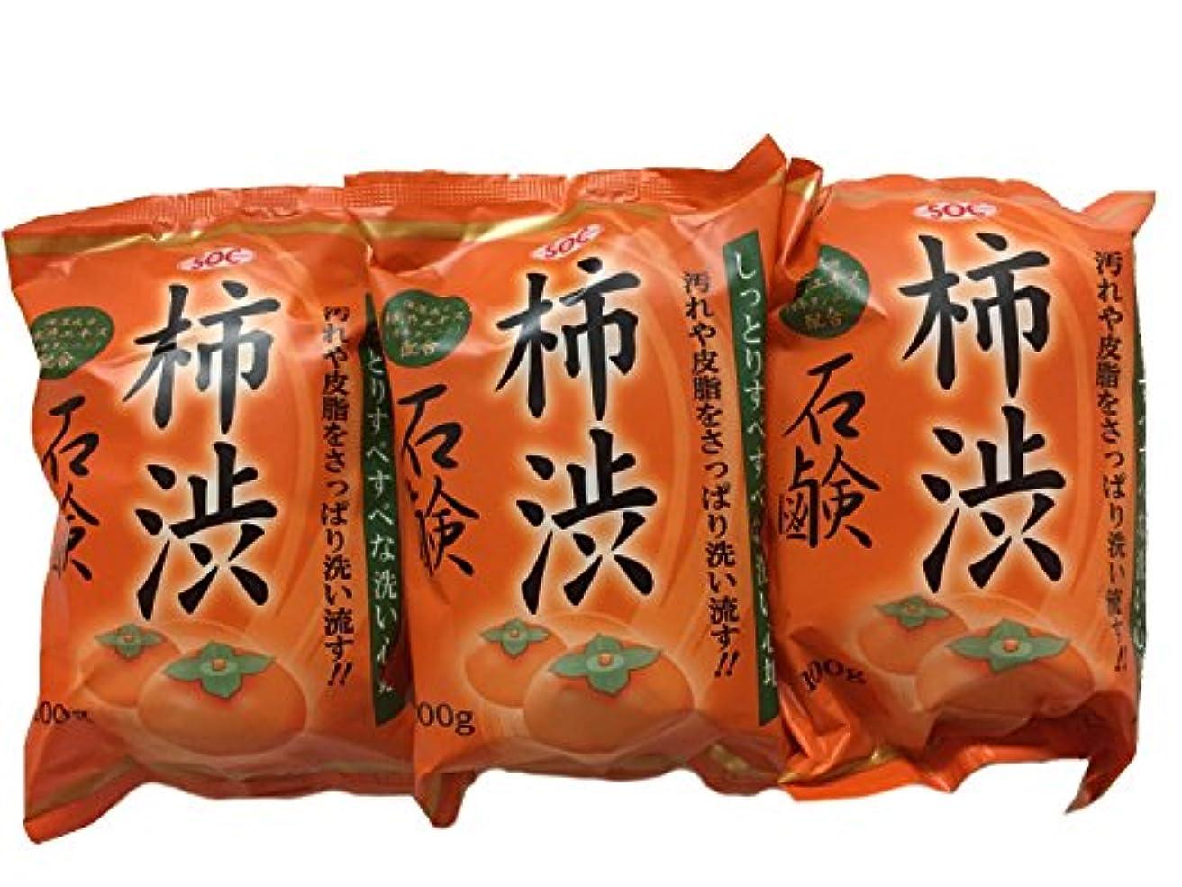 禁じるドループ予見する柿渋石鹸 100g×3個セット