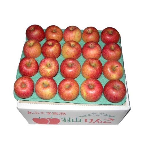 (訳あり) 菅野アップル農園 サンふじ とっても甘い ふじりんご 福島県羽山産 ご家庭用 小ぶりな Mサイズ 5kg