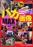 ゴー!ゴー!!バカ画像MAX (BEST MOOK SERIES 44)