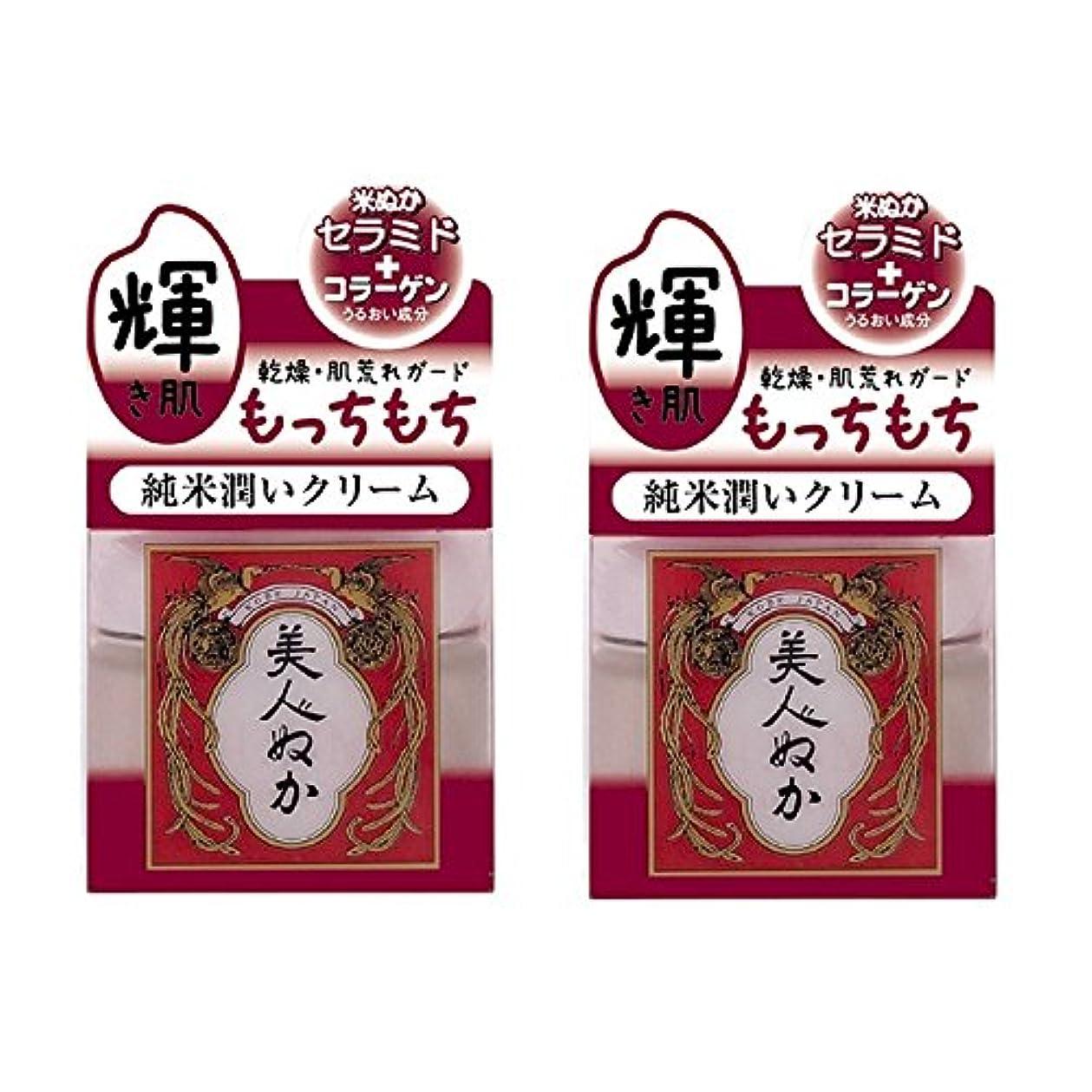 注入実現可能オプション美人ぬか 純米潤いクリーム 43g×2セット