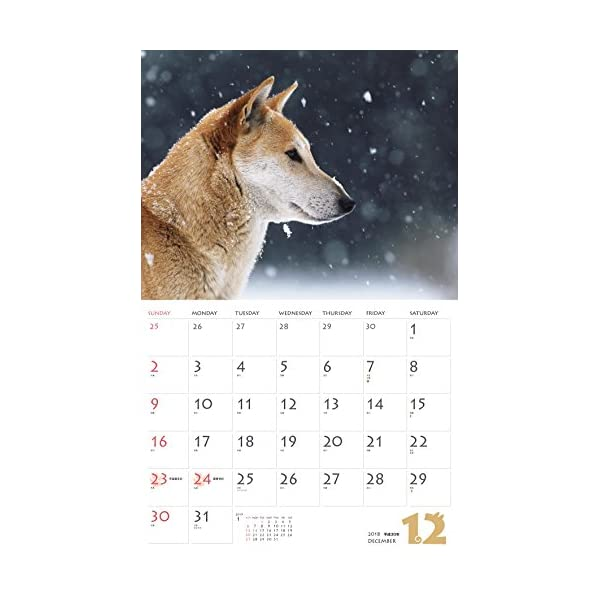 カレンダー2018 柴犬 (ヤマケイカレンダ...の紹介画像14