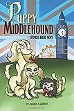 Puppy Middlehound Finds Her Way
