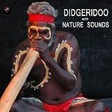 ディジュリドゥ 自然音 (Didgeridoo with Nature Sounds): 音楽療法, 癒し 音楽, 熟睡, 瞑想, 熟考, リラクゼーション, マッサージ, ヨガ, 太極拳)