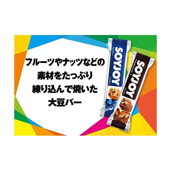 大塚製薬 ソイジョイ 30g×12個の紹介画像9