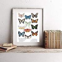家の装飾壁アートワークキャンバスhdプリント写真蝶絵画ポスター用リビングルーム-50×70センチ×1ピースフレームなし