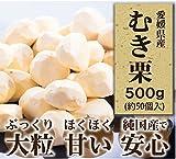 愛媛県産 むき栗 500g 【純国産のぷっくり大粒栗】