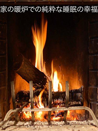 家の暖炉での純粋な睡眠の幸福