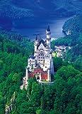 特選 World Scene 2014スモールピース ノイシュバンシュタイン城(ドイツ) (45cm×62cm、対応パネルNo.10-Y)