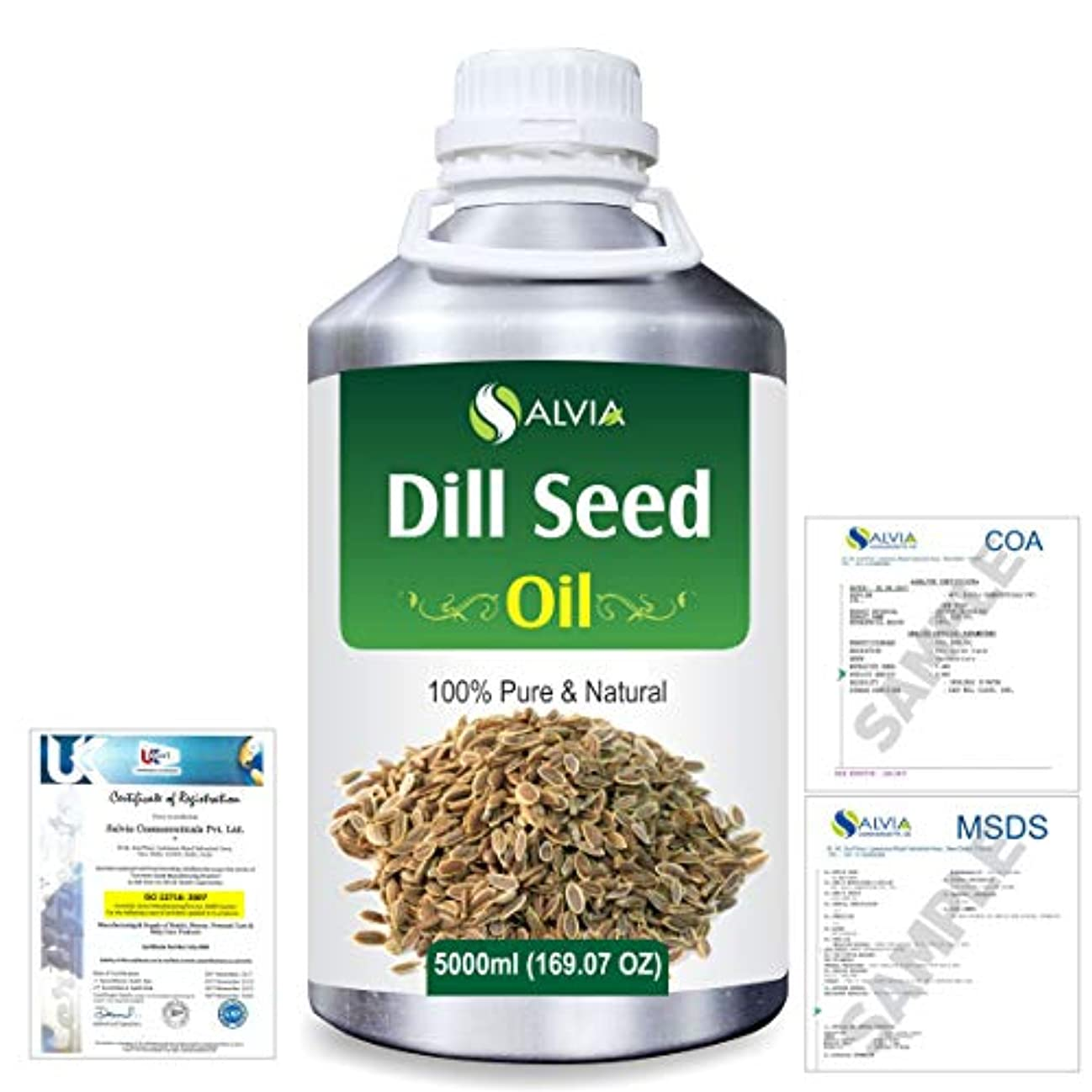 聴覚ごみ後世Dill Seed (Anethum graveolens) 100% Natural Pure Essential Oil 5000ml/169fl.oz.