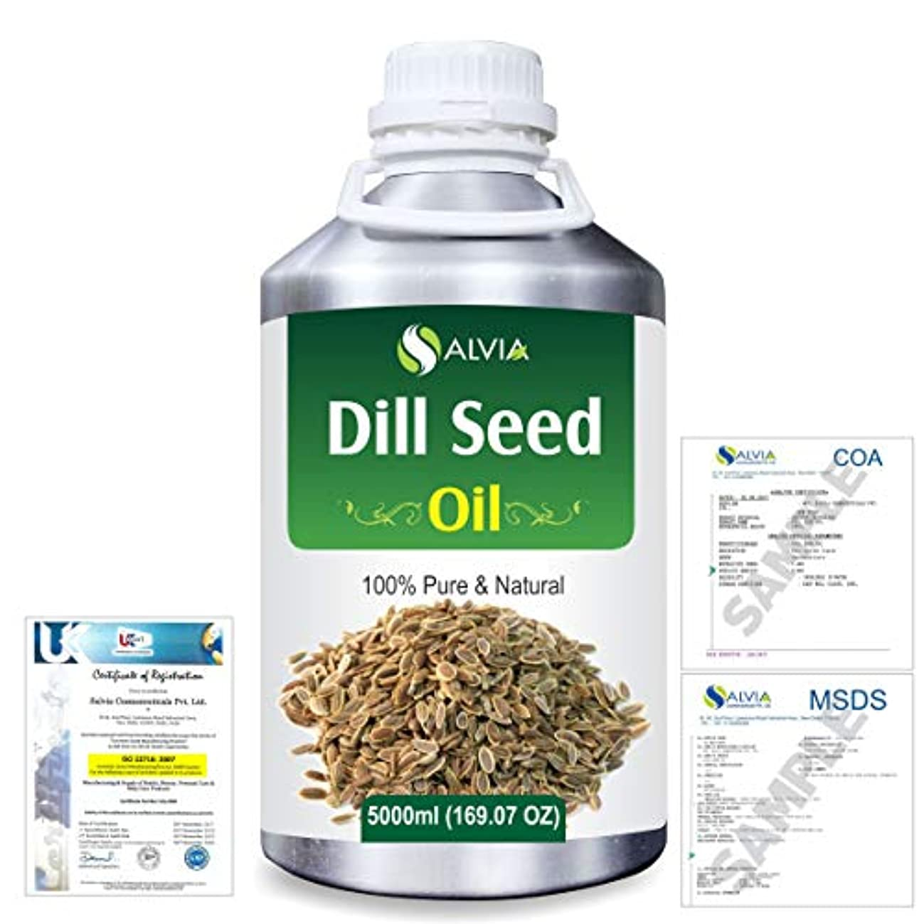 テレビを見る仮説危険にさらされているDill Seed (Anethum graveolens) 100% Natural Pure Essential Oil 5000ml/169fl.oz.