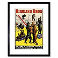 Advert Circus Ringling Bros Bears Box Stunt Framed Wall Art Print 広告サーカスくま壁