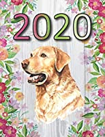 2020: Labrador Retriever 2020 Weekly Planner