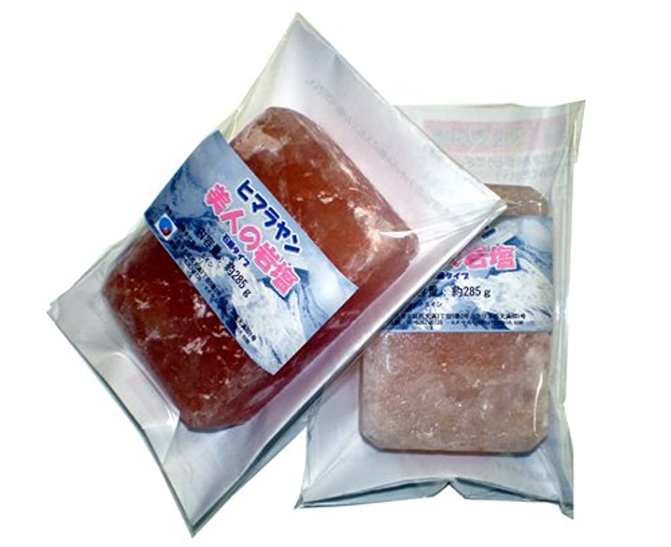細菌メンダシティ更新美人の岩塩(ヒマラヤピンク岩塩 石鹸型)